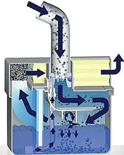 Thomas-aquafilter2
